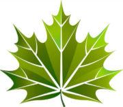 Greencool антифризы